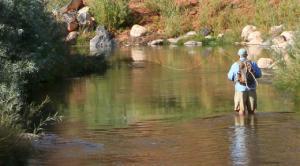 IMG 1894-Fishing