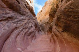 Little Wildhorse trail